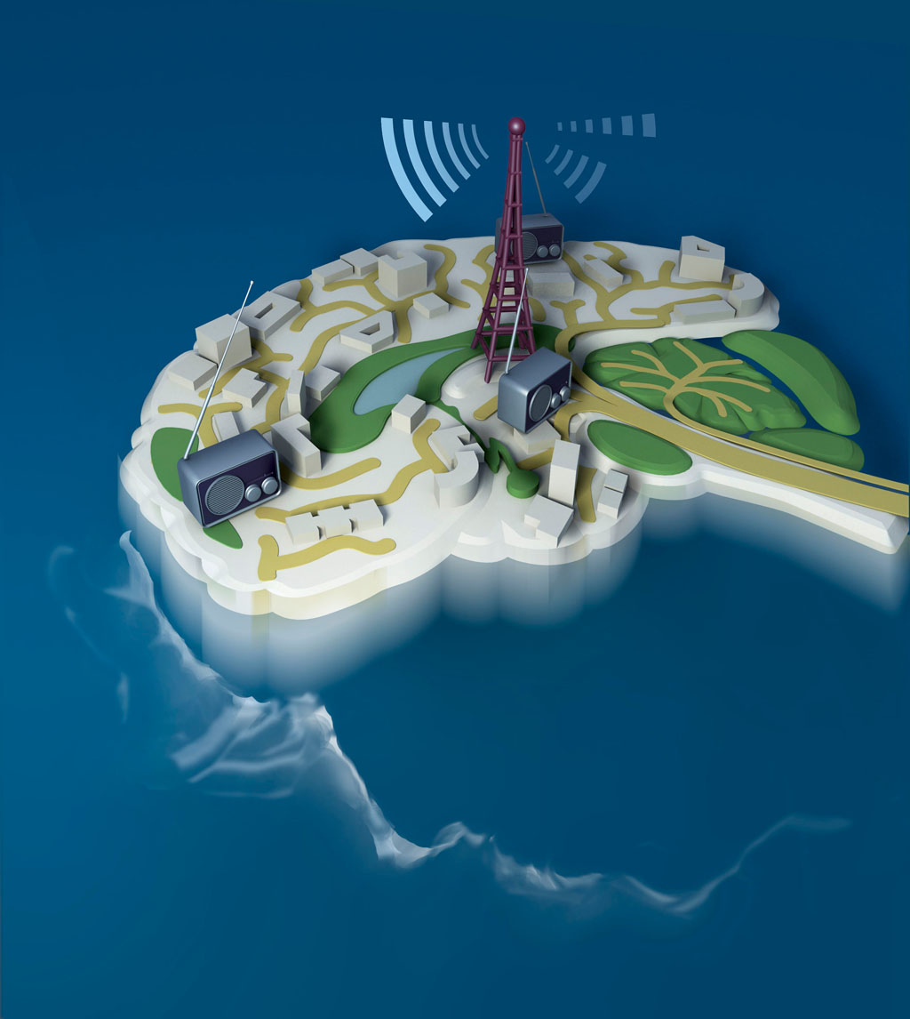 Circuit Brain Reusable : Scientists reveal brain circuit mechanisms underlying